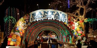 santas enchanted forest